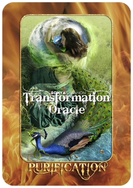Purification card in Sonya Shannon's Transformation Oracle