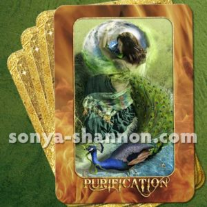 Purification Card from the Transformation Oracle