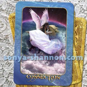 Connection Card in the Transformation Oracle